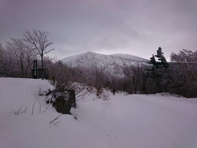 樹氷はまだまだでした_山形蔵王温泉スキー場