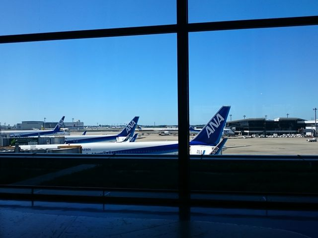 ana機がとまってました。_成田国際空港