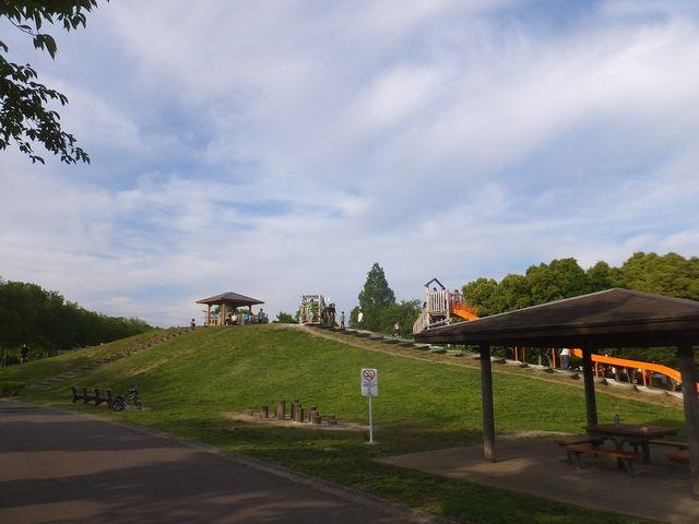 綺麗な公園_県営みさと公園