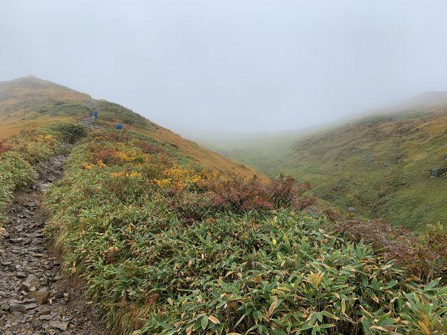 晴れていれば、かなりの絶景、のはず(霧の景色もいいけど)_越後駒ヶ岳・枝折峠登山口