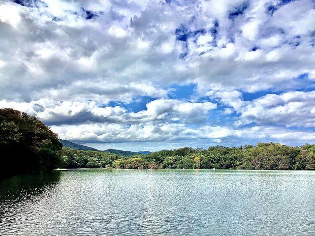 来年は紅葉を見たいです。_一碧湖