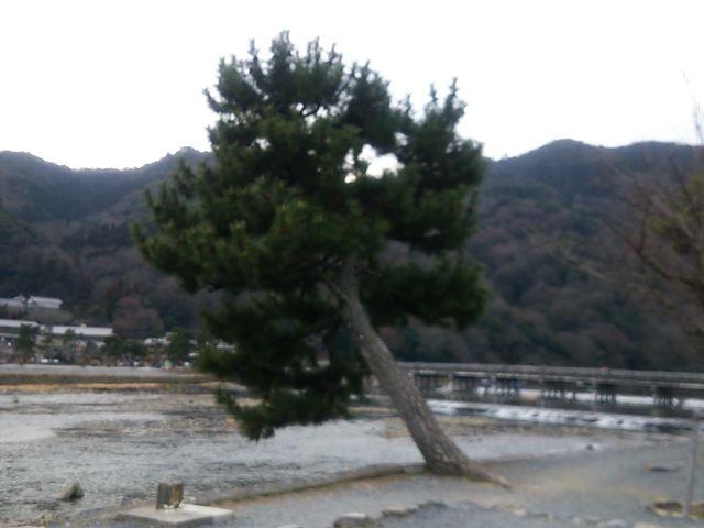 嵐山_嵐山