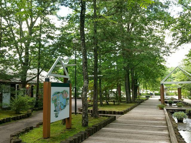 ゆっくり歩いて行くと湖に出会います♪_軽井沢タリアセン(ゴルフ)