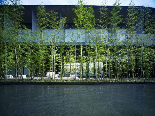 「竹と水」をテーマにした中庭。_ガーデンテラス宮崎