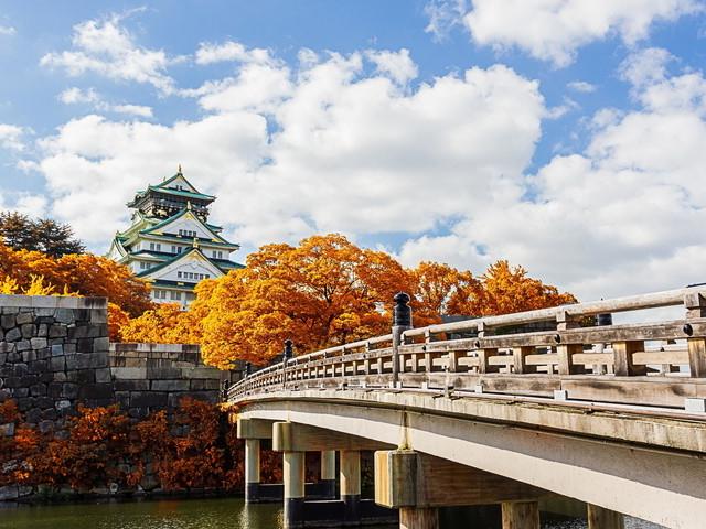 大阪の自然歴史体験 センス・オブ・ワンダー大阪