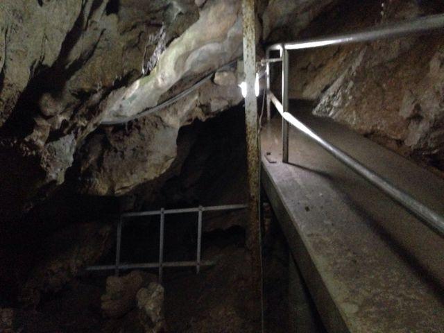 雰囲気はこんな感じでした。入り組んだ鍾乳洞でふす(≧∇≦)_橋立鍾乳洞
