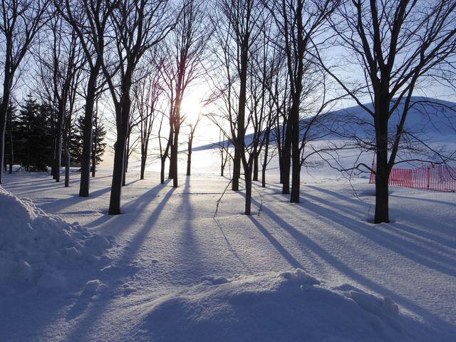 手付かずの雪が積もっています。_モエレ沼公園