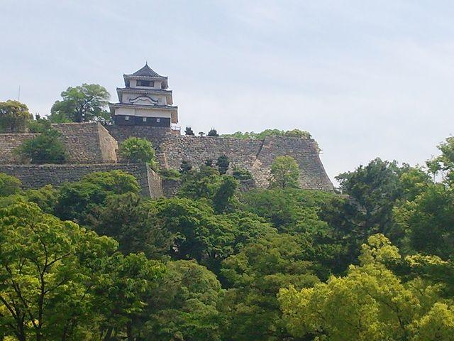 こんもりとした緑の森に囲まれ_丸亀城