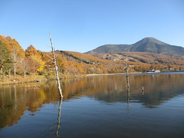 女神湖畔 ※先ほどの投稿2枚目、(誤)白樺湖畔→(正)女神湖畔でした。_女神湖