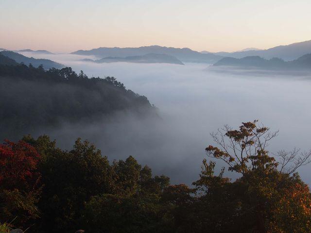 一面の霧の海です。_津和野城址
