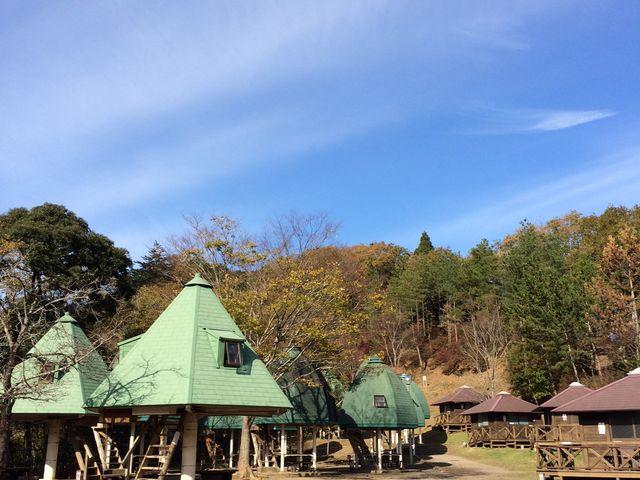 キャンプ場風景_清和県民の森ロッジ村・キャンプ場