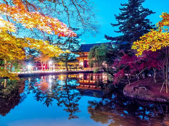 鏡池に紅葉を映す、と大仏殿は木陰_東大寺金堂(大仏殿)