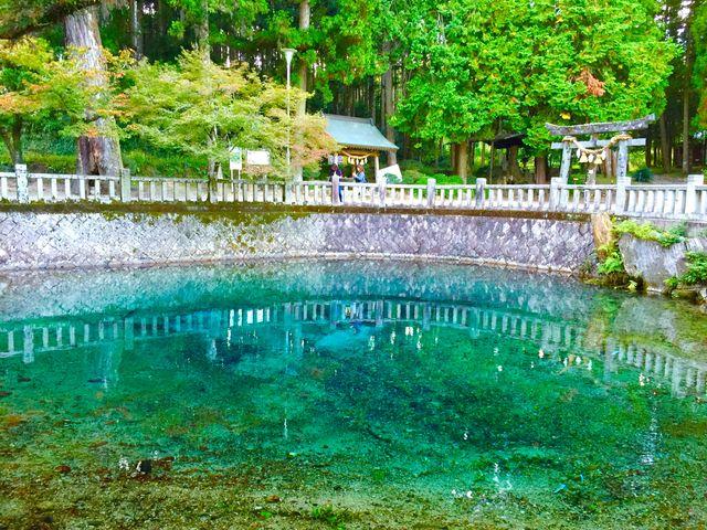 イメージを超える綺麗なブルーな池でした。_別府弁天池