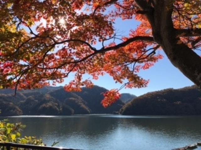宮ヶ瀬湖_宮ヶ瀬湖