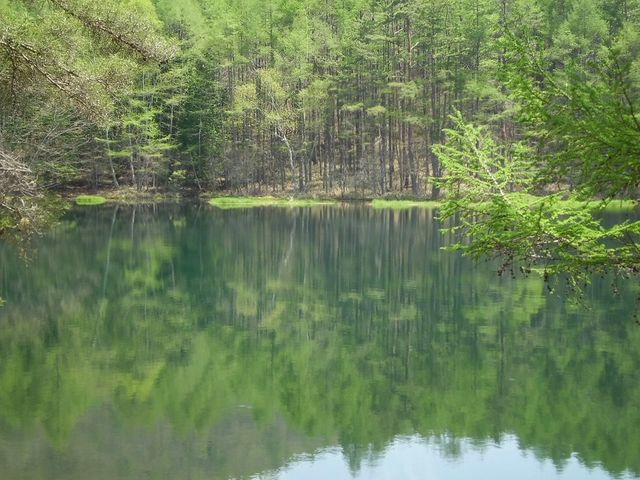 綺麗な池。_御射鹿池