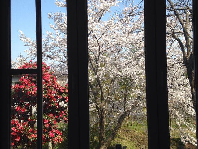 窓からの眺め。_旧師団長官舎