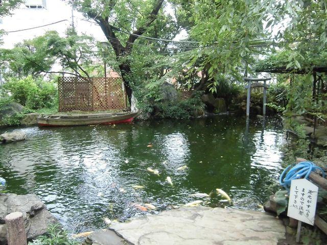 境内の池_愛宕神社