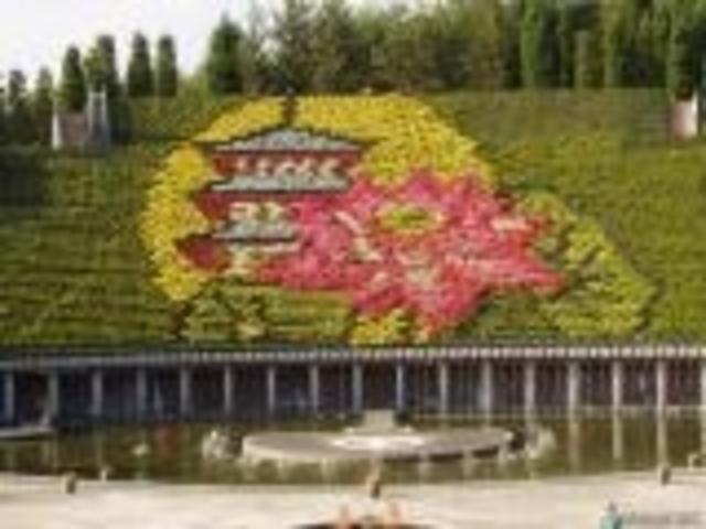 きれい_宇治市植物公園