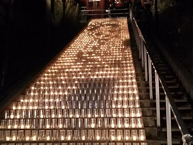 ライトアップ_光泉寺