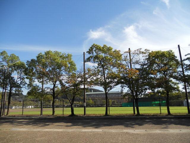 岡崎公園_岡崎公園