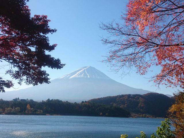 もみじトンネルの紅葉と富士山_富士河口湖温泉郷