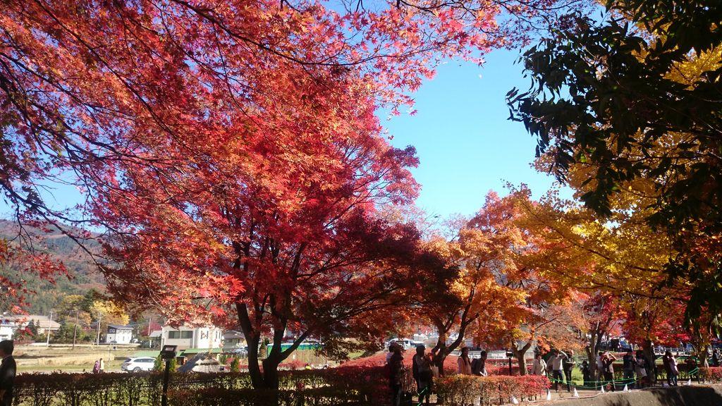 富士河口湖温泉郷