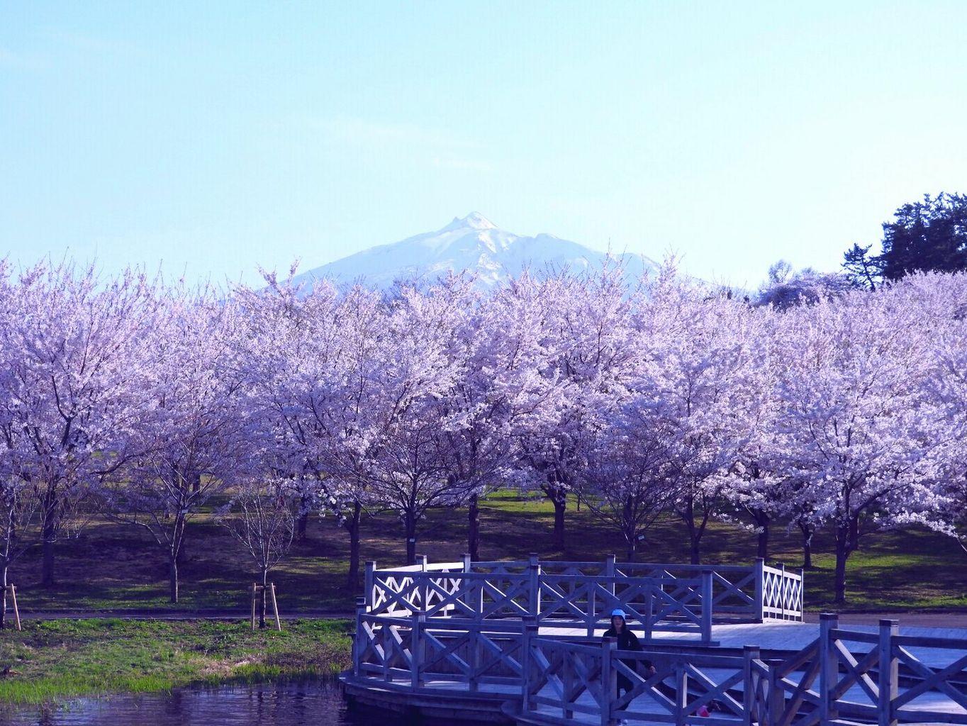 津軽富士見湖パーク