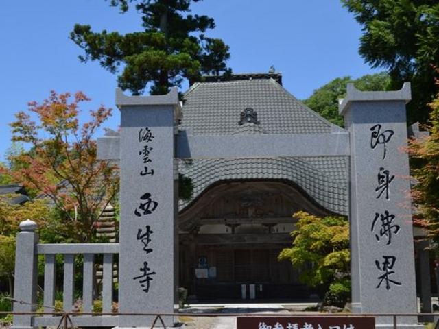なかなかの趣_西生寺の大銀杏