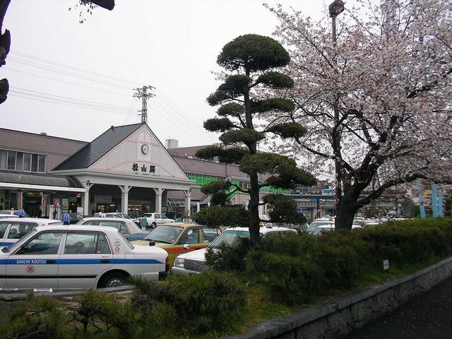 桜と松山駅_JR松山駅