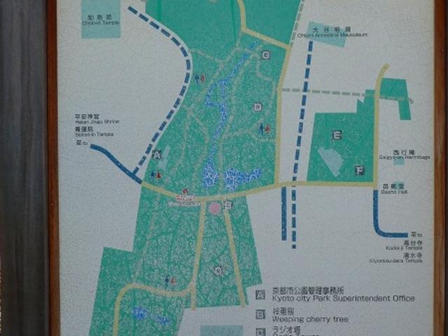 京都府京都市東山区・円山公園_円山公園