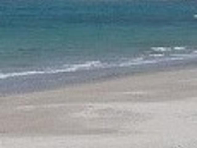 白浜海岸_白浜海岸
