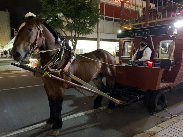ムサシコマと馬車_ホテルヌプカ