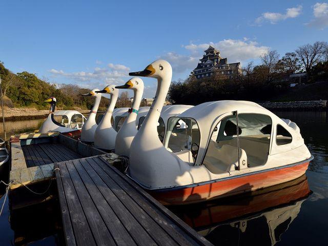 4人乗りスワンボートもございます_Caf'e&Restaurant&Boating 碧水園