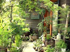 \はじめてさんにもオススメ!/自分だけの小さな庭を作ろう~草木盆栽体験~